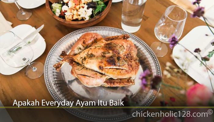 Apakah Everyday Ayam Itu Baik
