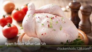 Ayam Broiler Sehat Gak Sih
