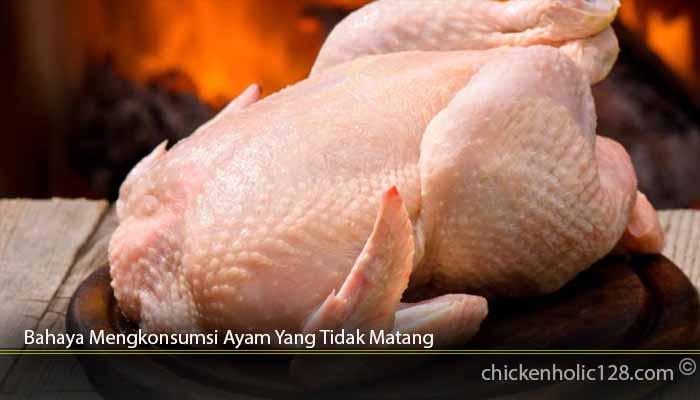 Bahaya-Mengkonsumsi-Ayam-Yang-Tidak-Matang