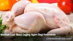 Manfaat Luar Biasa Daging Ayam Bagi Kesehatan