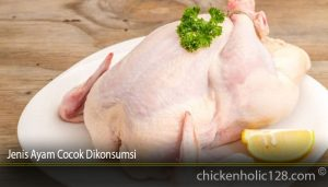 Jenis Ayam Cocok Dikonsumsi